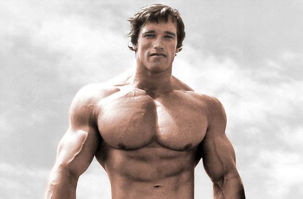 Arnold Schwarzenegger Quotes Gym Quotes by Arnold Schwarzenegger Arnold Schwarzenegger Quotes in Terminator Funny Arnold Schwarzenegger Quotes Arnold Schwarzenegger Quotes Pumping Iron Inspirational Arnold Schwarzenegger Quotes Arnold Schwarzenegger Quotes on Strength Workout Quotes by Arnold Schwarzenegger Arnold Schwarzenegger Quotes One Liners Arnold Schwarzenegger Leadership Quotes Best Bodybuilding Quotes Arnold Schwarzenegger Arnold Schwarzenegger Quotes A Well Build Physique is a status symbol Arnold Schwarzenegger Quotes Get to the Chopper Arnold Schwarzenegger Quotes about Life Arnold Schwarzenegger Quotes about Money Arnold Schwarzenegger Quotes For Me Life Arnold Schwarzenegger Quotes Never Give Up Arnold Schwarzenegger Motivational Quotes 195+ Arnold Schwarzenegger Quotes - Best Collection Quotes4ever has the Best Collection of Arnold Schwarzenegger Quotes. These Inspirational & Motivational Body Building Quotations are about Gym, Movies, Strength, Workout, Leadership, Never Give Up, Life, Money and So on.